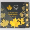 Pièce Or Maple Leaf 1g x 25